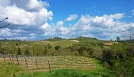 Bei Volterra_Toskana_1